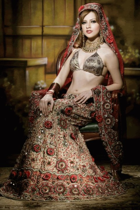 Sexy pakistani bridal dresses logically