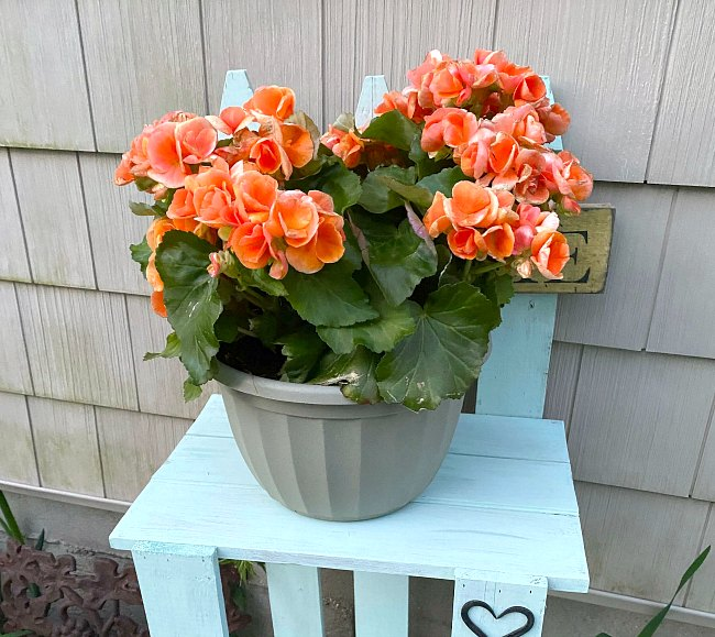 Easy Picket Fence Garden Table