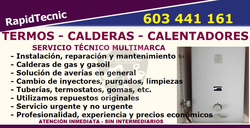 Reparaciones reparaci n calderas termos y calentadores for Reparacion calderas gasoil