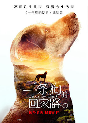 A Dogs Way Home Movie Poster 4