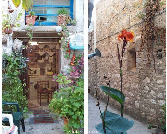 greckie mieszkanie, kwiat i konewka średniowieczna uliczka Mesta