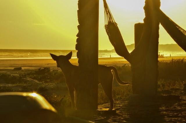 El Cuco Beach sunset