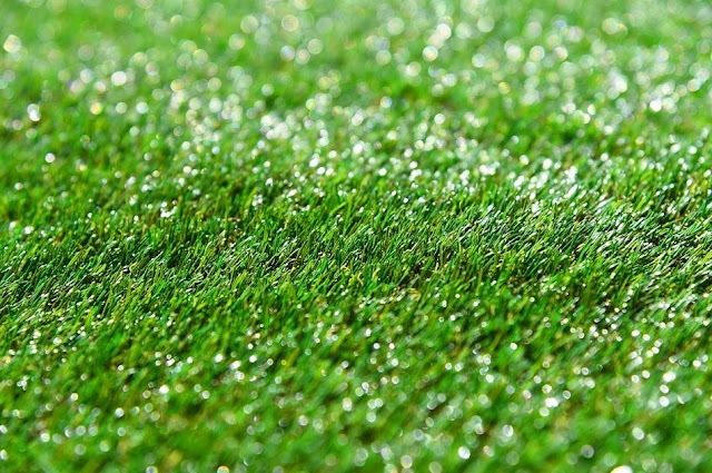 Apa itu Rumput Sintetis? Ini Pengertian dan Jenis-Jenisnya