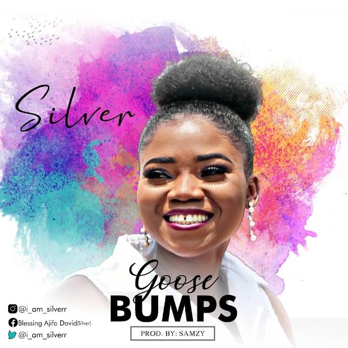 Silver - Goosebumps   #BelieversCompanion