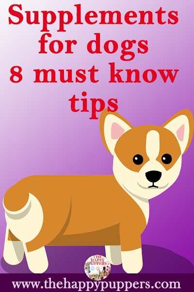 Vitamin requirements for young puppies. 8 tips every dog guardian must know