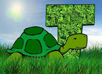 Image: T is for Turtles, by Gerd Altmann on Pixabay