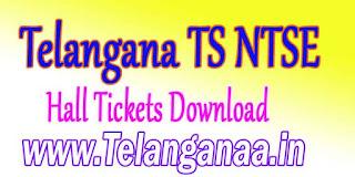 Telangana TS NTSE Examinations Hall Tickets Download bsetelangana.org