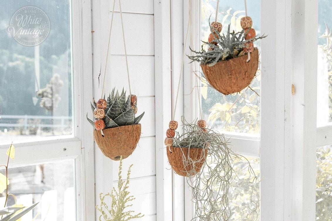 Kokos-Blumenampel basteln