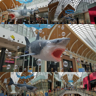 Shark at St David's shopping centre in Cardiff