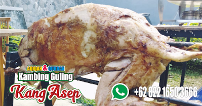 Supplier Kambing Guling di Lembang | 082216503666, supplier kambing guling lembang, kambing guling lembang, kambing guling,