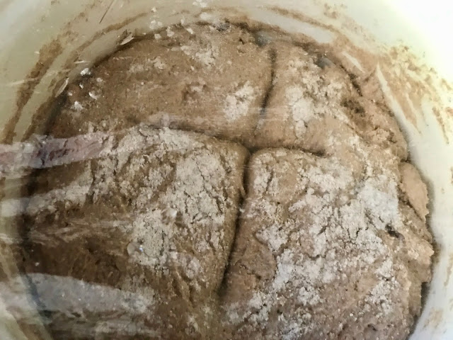 Sourdough at the end of the proofing