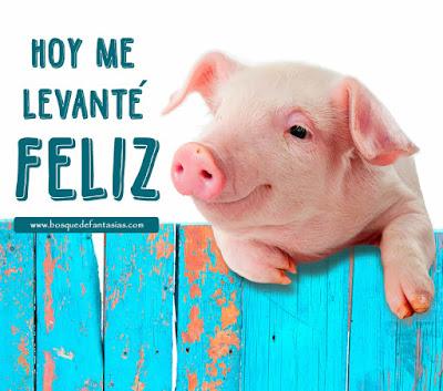 humor para facebook un cerdo dice me levante feliz