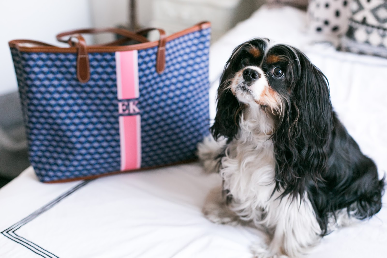 Bijuleni | King Charles Cavalier Spaniel tri colour with St. Anne Monogram Tote