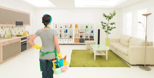 Membersihkan Udara Dalam Rumah Secara Alami