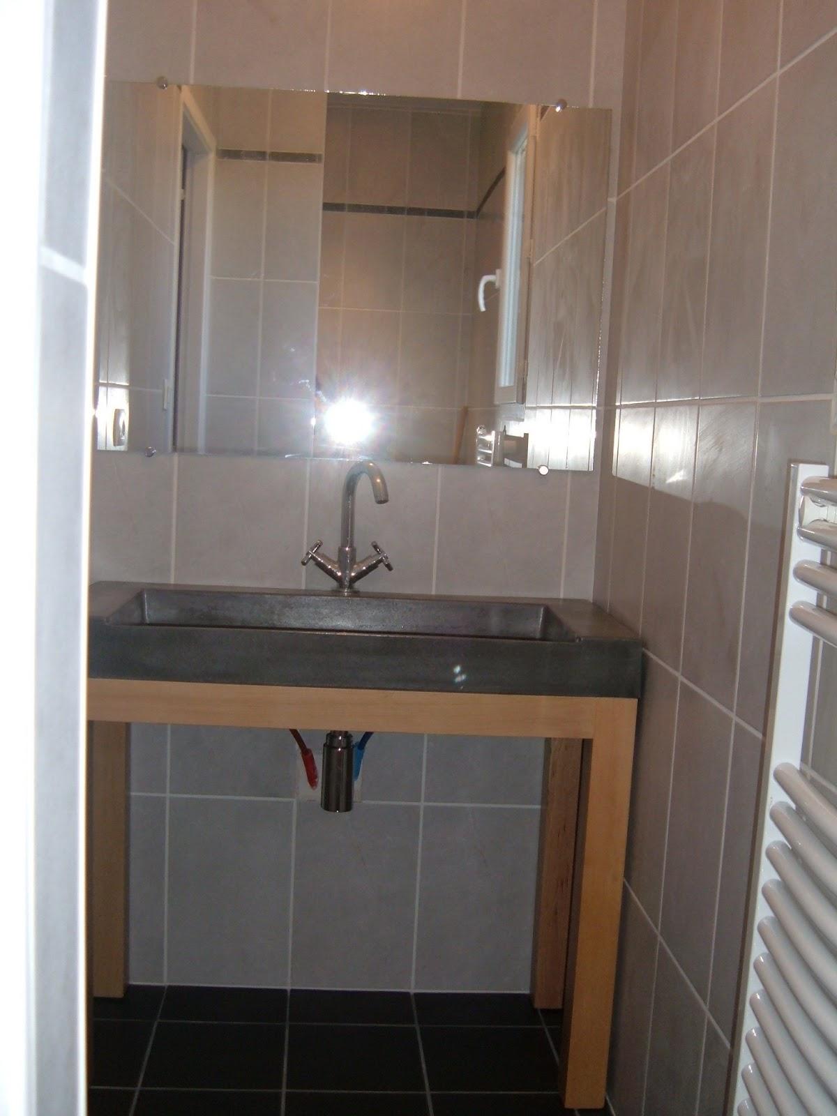 maison vendre fonsorbes domaine de banayre suite parentale dressing salle d 39 eau. Black Bedroom Furniture Sets. Home Design Ideas