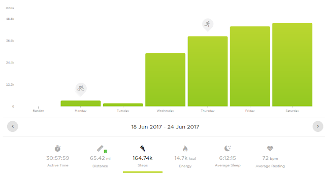 FitBits | Glastonbury Festival miles walked calories burned steps - Tess Agnew fitness blogger