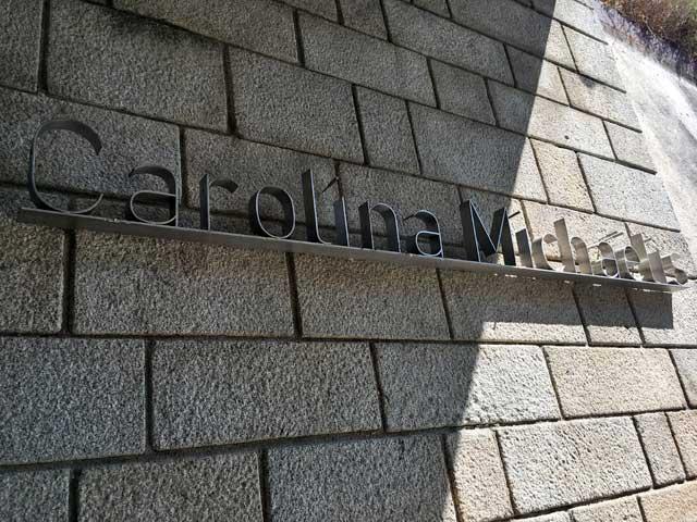 Carolina Michaelis Station Porto Metro