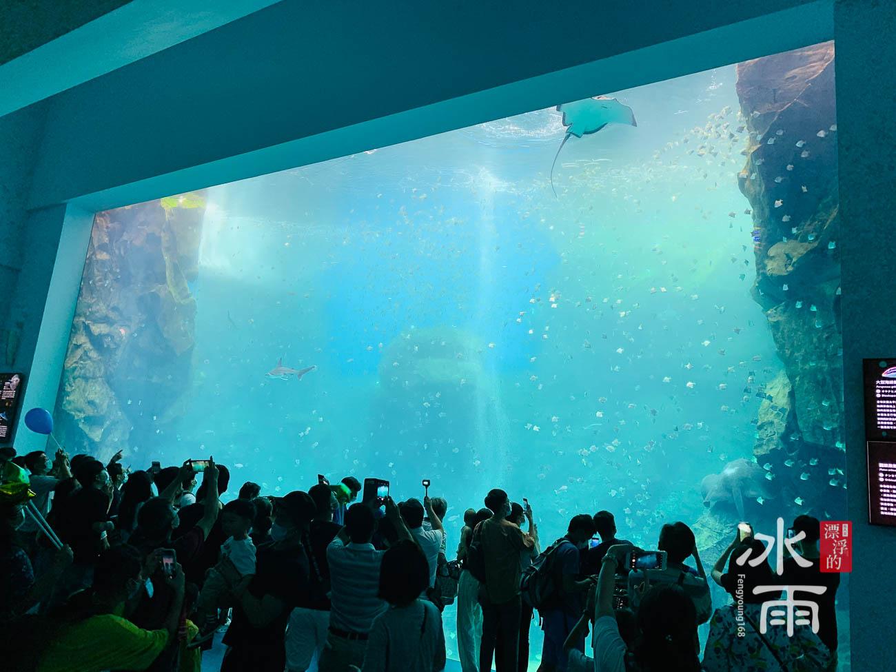 Xpark水族館|福爾摩沙