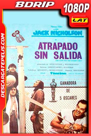 Atrapado sin salida (1975) 1080p BDrip Latino – Ingles
