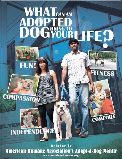 A poster from a previous 'Adopt-A-Dog Month' campaign