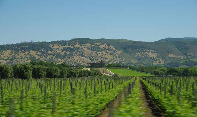 Napa Valley Travel Tours