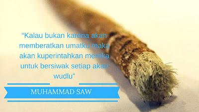 Siwak sangat di anjurkan oleh Nabi Muhammad SAW untuk merawat gigi, gusi dan mulut
