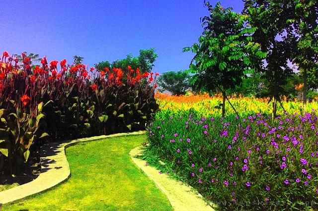 Areal Bunga Taman Eks Incinerator Keputih