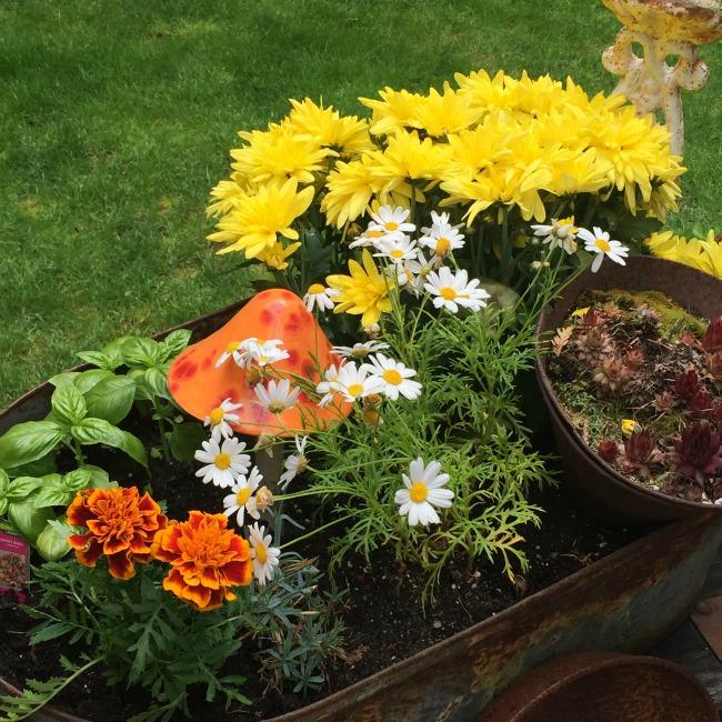 Garden Junk in the backyard