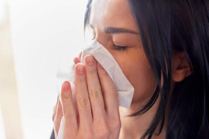 Ketahui Ragam Gejala Sinusitis agar Bisa Segera Diobati