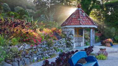 Tresco Abbey, plantas de clima mediterráneo en un jardín de Inglaterra