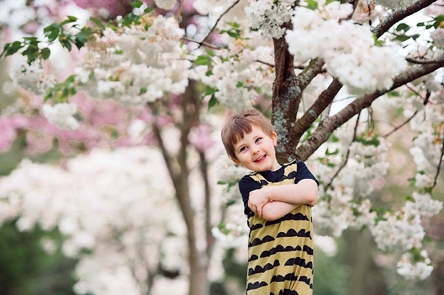 A boy standing in front of a tree with pinky white cherry tree blossoms taken by Two Hearts One Roof