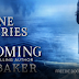 Freebie Book Blitz - The Crane Diaries: Homecoming by Apryl Baker