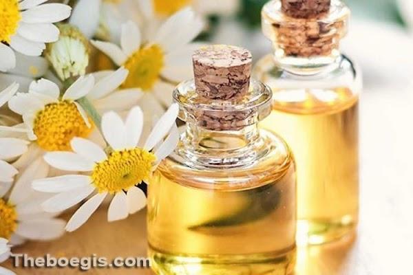 Benefits of Bulus Oil for Skin Beauty