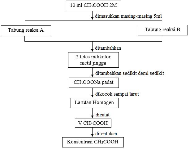 diagram alir Sistem asam asetat(CH3COOH) dalam air