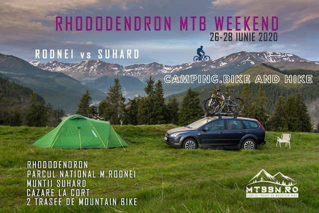 Rhododendron MTB Weekend MTBBN Muntii Rodnei