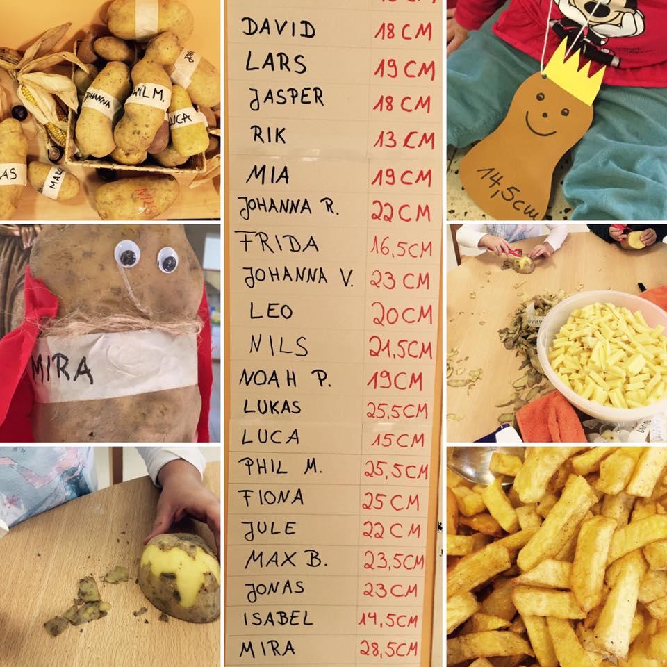 Kindergarten projekte projekt kartoffelk nig for Herbstprojekt im kindergarten