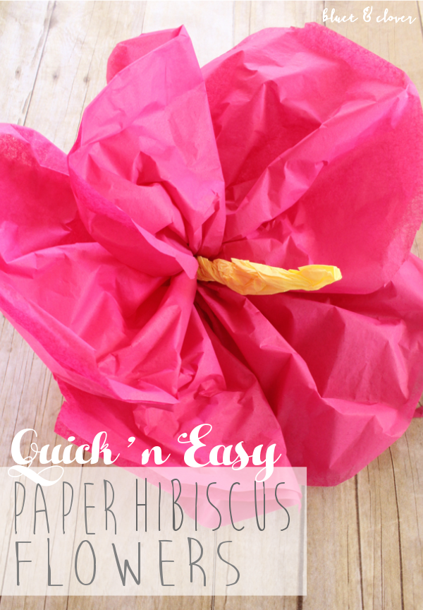 Bluet Clover Quick And Easy Paper Hibiscus Flowers