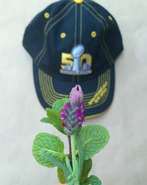 The Hangover Bouquet - Floral Relief Arrangement, Perfect Gift Idea for Super Bowl Monday! | www.jacolynmurphy.com