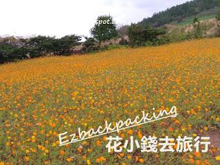 咸德犀牛峰賞花