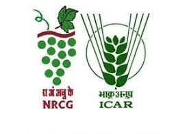 National Research Centre For Grapes Recruitment 2020 Young Professional -I, II – 9 Posts Last Date 11-02-2020 – Walk in