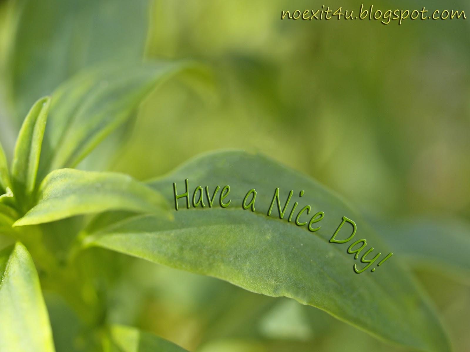 HAVE A NICE DAY WALLPAPER (HD) ~ noexit4u.com