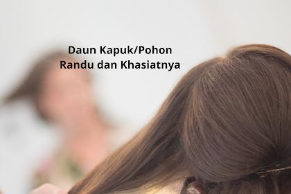 5 Cara Tradisional Hitamkan Rambut Dengan Daun Kapuk/Randu