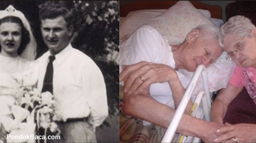Cinta Sehidup Semati Harold Dan Ruth