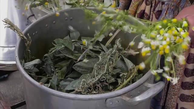 Bartolinas piden a la población priorizar uso de hierbas medicinales para combatir el COVID-19