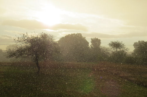 rain in sun