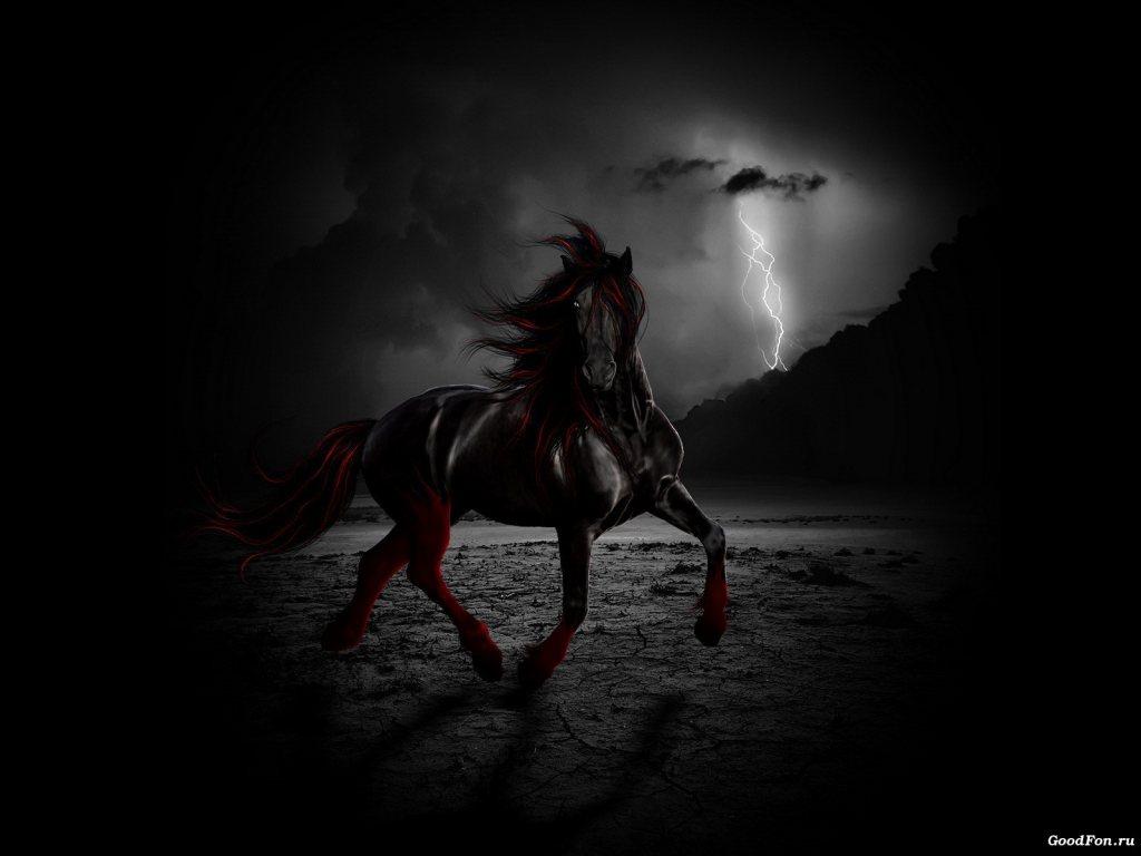 Good   Wallpaper Horse Epic - MixoPlanet+%2817%29  Gallery_206632.jpg