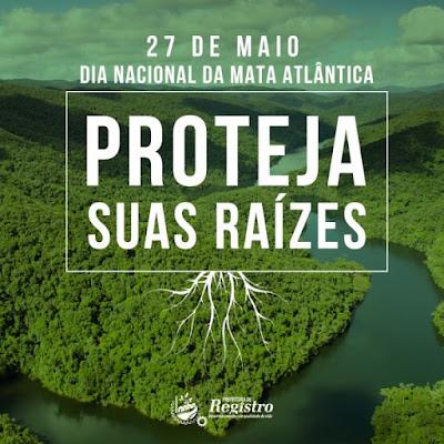 27 de Maio - Dia Nacional da Mata Atlântica