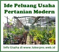 13 Ide Peluang Usaha Pertanian Modern Yang Menguntungkan Kerja Dan Usaha 2021 2022