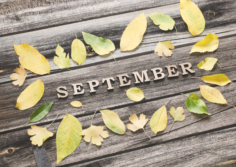 'September' with leaves around it in a post about setting my monthly goals for September 2020