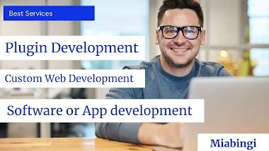 Top WordPress Plugin Development Services by Guru Team